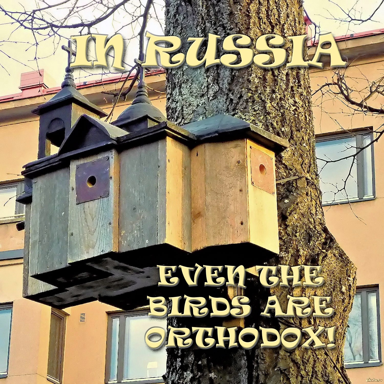 00 russia birdhouse 210816