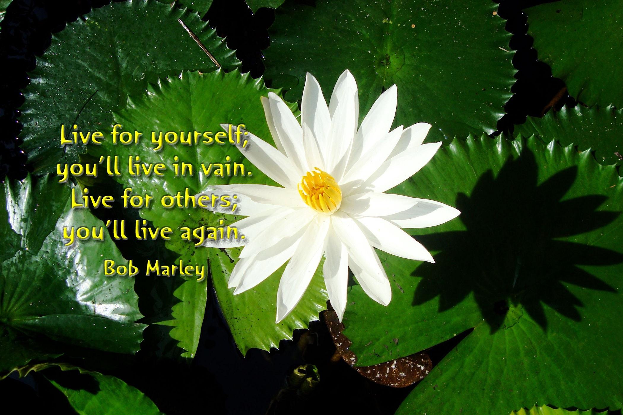 00-bob-marley-180916